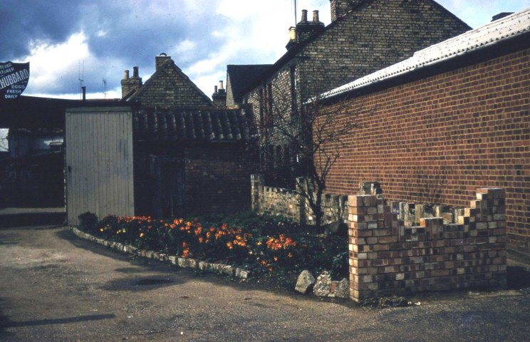 Back Street Hubbards back entrance and Roothams Terrace  1957